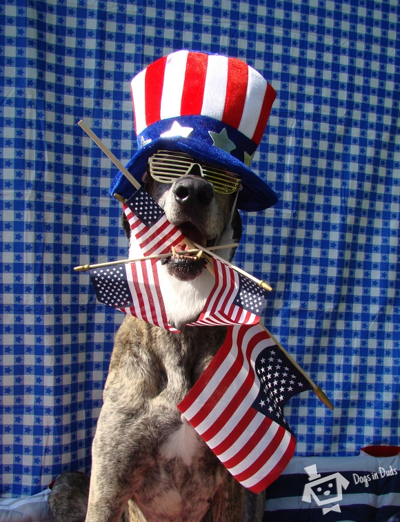 Patriotism. I has it.
